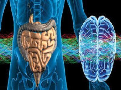 In dit artikel legt een neuroloog uit waarom gezonde darmbacteriën automatisch een gezond brein en gezond gedragbetekenen. Wist je dat je darmen 80-90% van de serotonine produceren? Je kunt je dan…