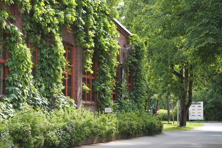 Summer in Riihimäki glass studio. It is super green at this time of the year!