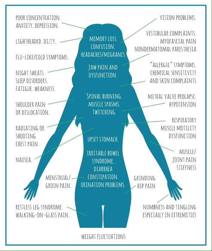 Lyme disease in humans - photo#38