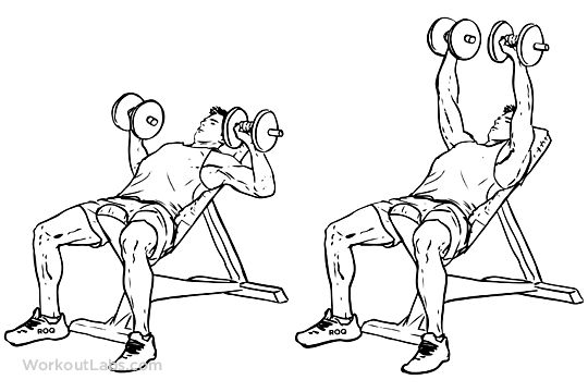 Chest Day Incline Dumbbell Bench Chest Press 8reps x 4 sets