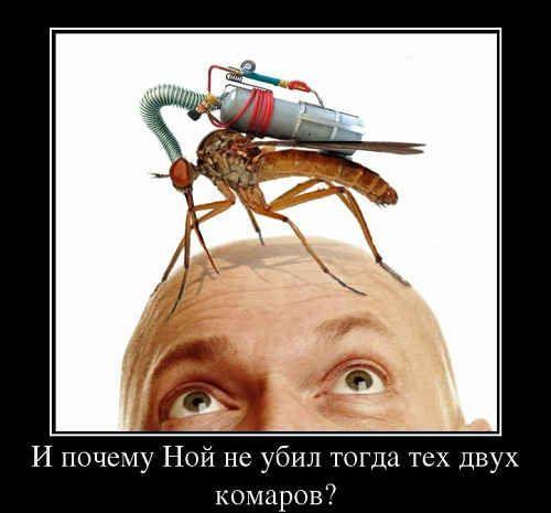 укус комара народные средства