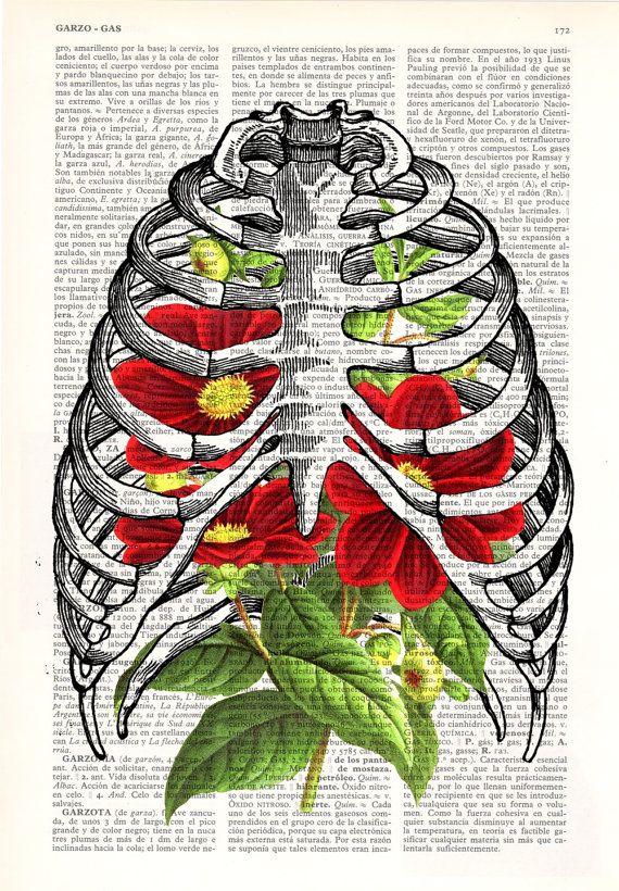 Rib cage with dhalias human Anatomy Print on dictionary by PRRINT