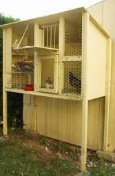 how to build pigeon cages