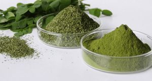 Moringa – The Herb That Kills Cancer And Stops Diabetes - Mr. Healthy Alternative