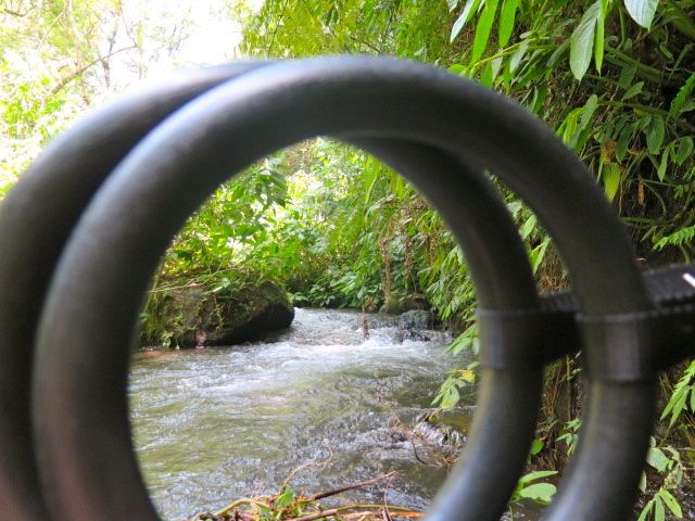 Lush ravine. Cool river. Rings suspended from a tree. Ready to do some Fusion Fitness Moves. http://www.sharingbali.com/bootcamp/general-fitness/
