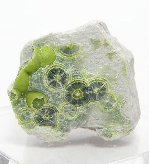 Green and Yellow Wavellite Crystalline Botryoidal - FenderMinerals