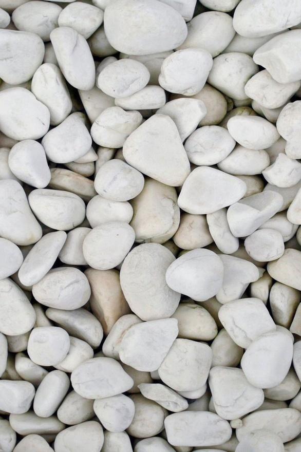 white rocks (STUDIO Naya)