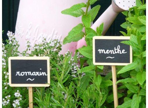 Etiquettes en bois à planter (10) + marqueur - Jardin et Saisons