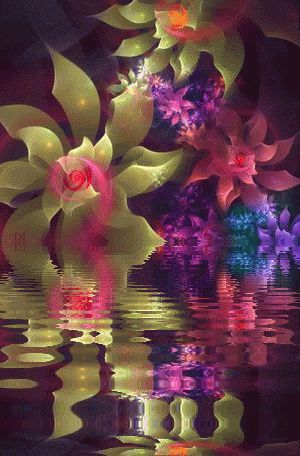 89eace03f27c2dcce969fbb7763350ab--rainbow-flowers-animated-gifs.jpg