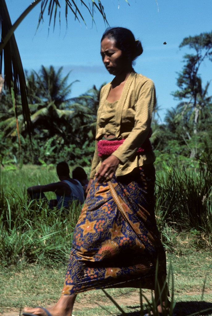 Balinese woman in sarong walks past rice field