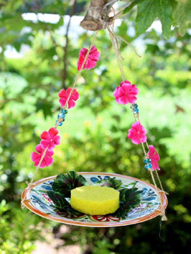 TOP 10 Ways to Make a Beautiful Homemade Butterfly Feeder