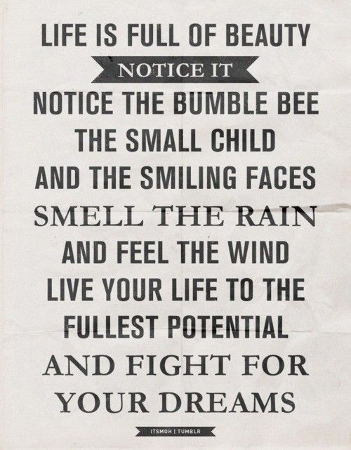notice the small things.: Little Things, Life, Inspiration, Quotes, Wisdom, Beauty, Notice, Bumble Bees