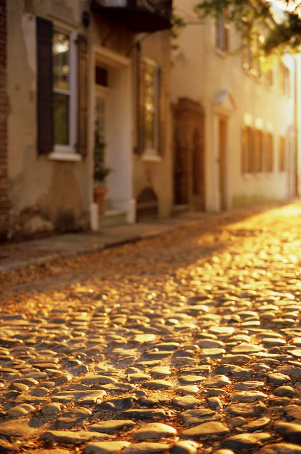 Morning on a Cobblestone Street, Charleston, SC © Doug Hickok  All Rights Reserved hue and eye daily photo blog hue and eye tumblr the peacock's hiccup, my art blog
