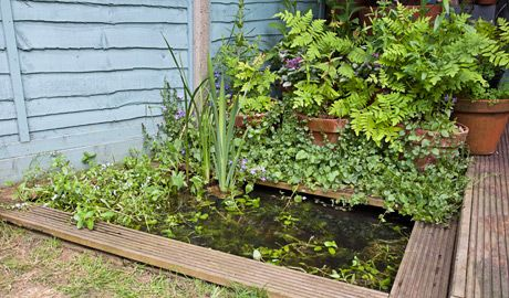 DIY small garden pondDiy Small, Gardens Ideas, Diy Gardens, Backyards Ponds, Water Features, Garden Ponds, Gardens Diy, Squares Gardens Ponds, Howto