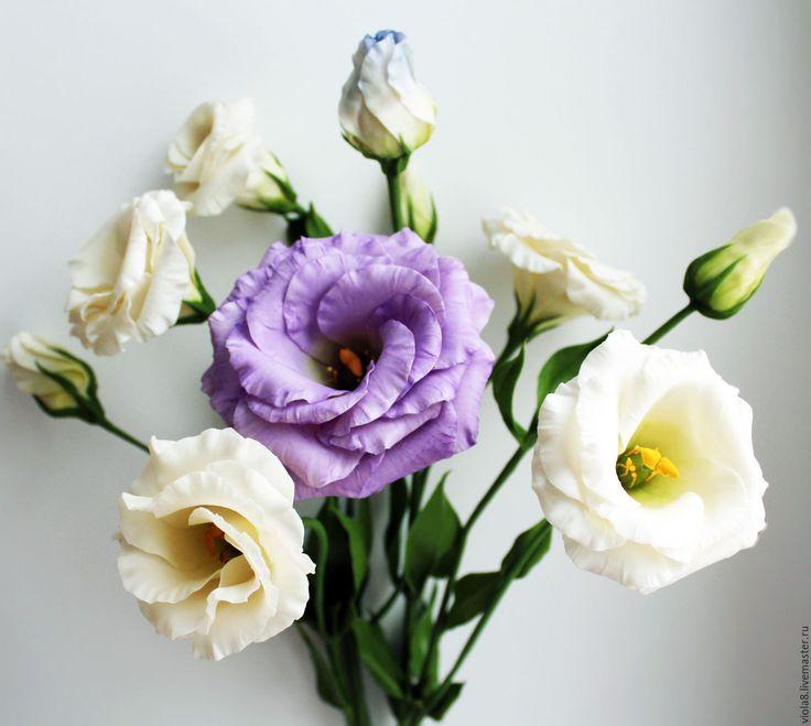 Цветы у стома картинки