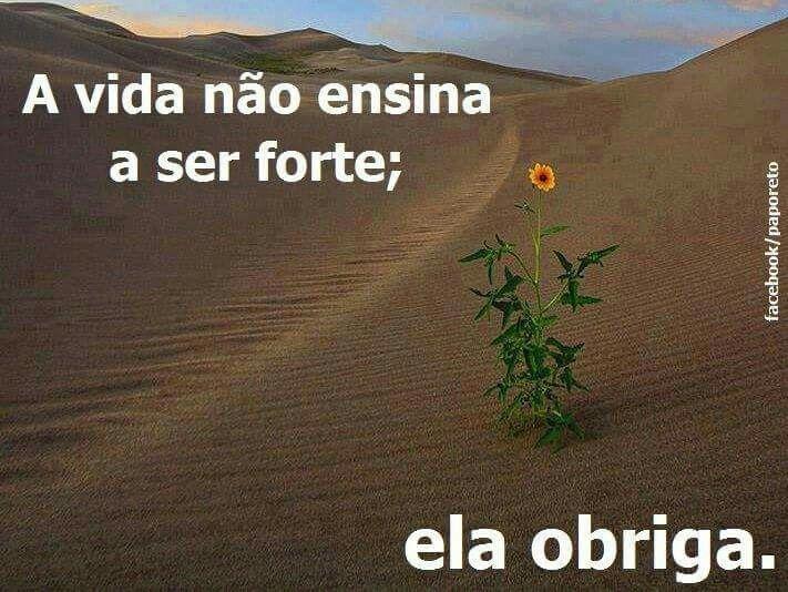 Frases Cifras Do Facebook: 1000+ Images About Cifras..Pensamentos..Frases..que Nos