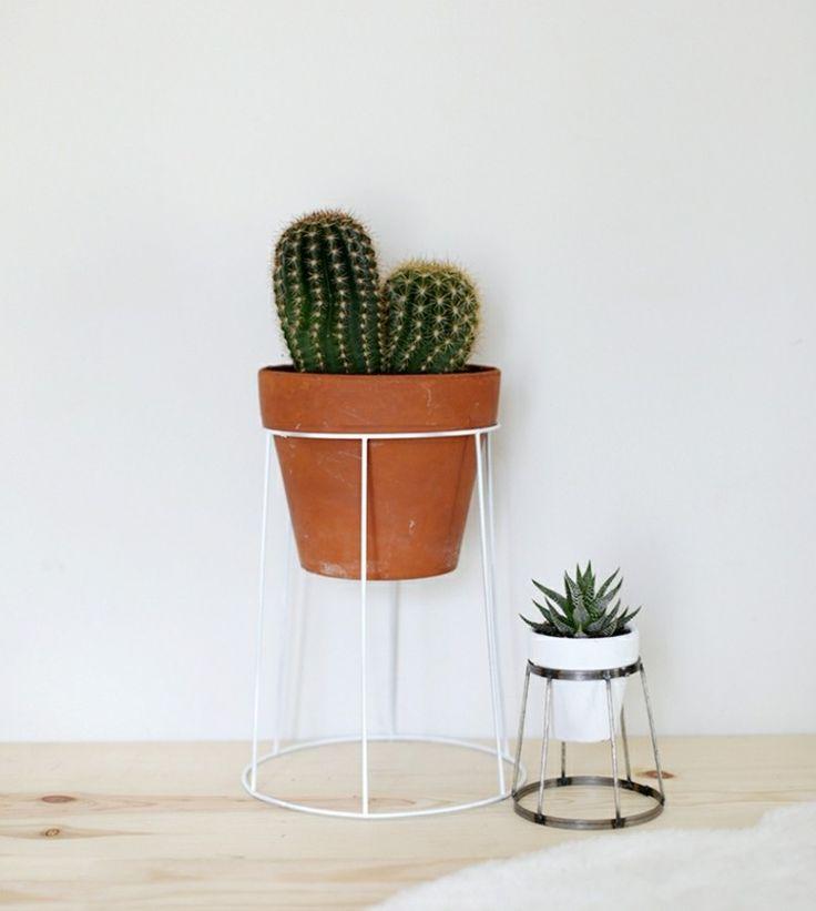 Blumenregale aus Metall - Idee mit Lampenschirm-Gestelle