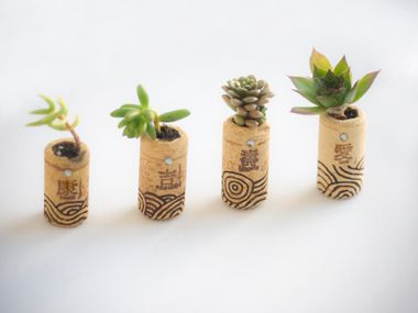 Cutest mini-plants ever! DIY Succulent Mini Garden Wine Corks | Lauren Lumsden's Favorite Things | Everywhere