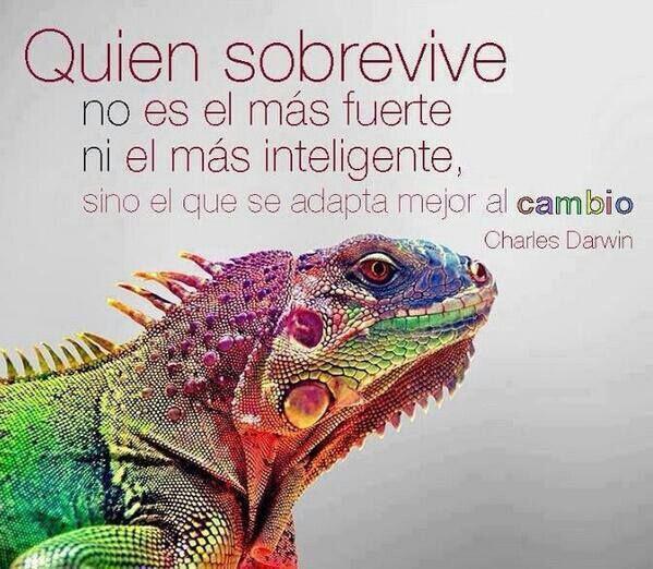 Quien sobrevive no es el mas fuerte ni el mas inteligente. Charles Darwin