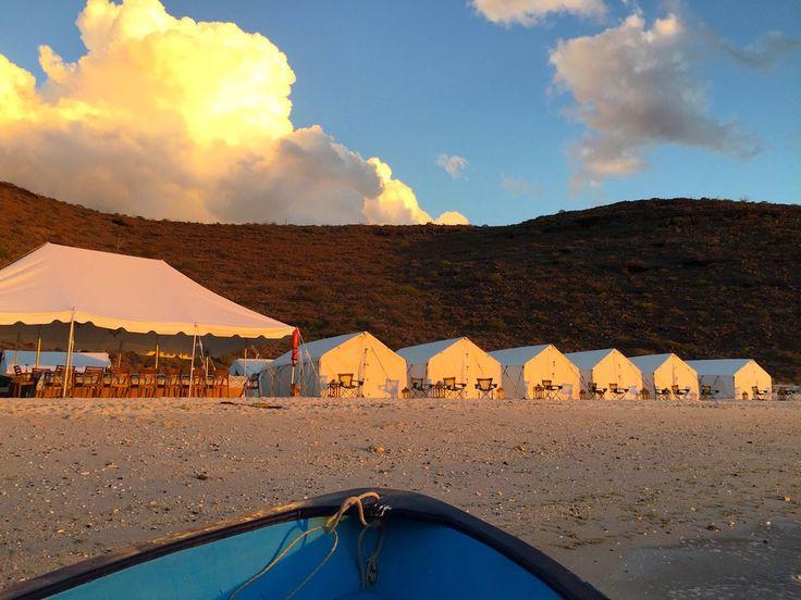 Camp Cecil: Baja's Best New Getaway  — Kim Brown Seely