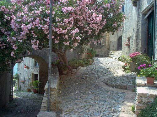 Borgo Revezzi, Liguria