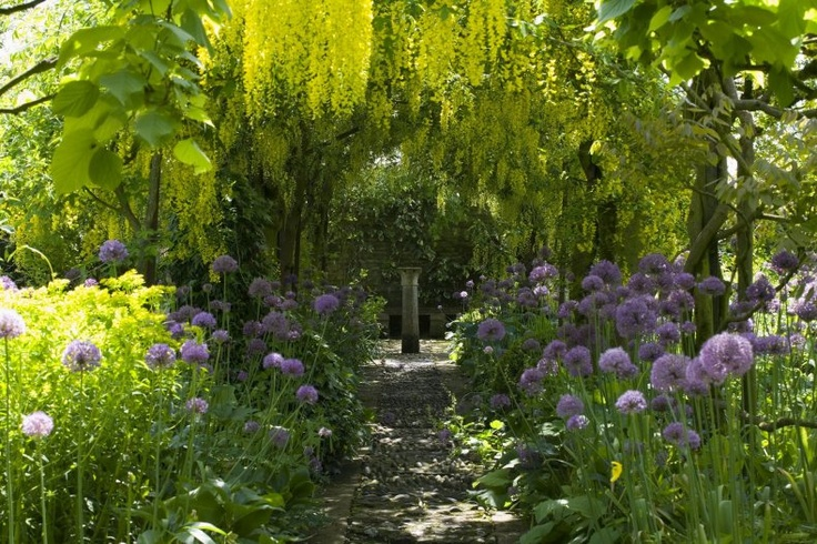 .Barnsley House, Gardens Create, Secret Gardens, Gorgeous Gardens, Gardens Design Ideas, Gardens Paths, Laburnum Walks, Beautiful Gardens, Purple Flower