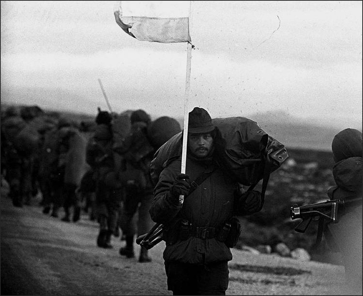 the effect the 1982 falklands war had Causes the falkland islands are a desolate and cold group of islands in the south atlantic, 400 miles off the south american mainland the two main islands are about the same area as wales in the uk and in 1982 had a population of 1,820 people and 400,000 sheep - hardly a place that would expect an invasion or a war of liberation in response.