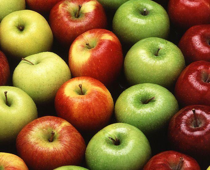 Tο μήλο είναι πλούσιο σε βιταμίνες, διαιτητικές ίνες, μεταλλικά στοιχεία. Περιέχει ασβέστιο, φώσφορο, σίδηρο, κάλιο, βιταμίνη C, βιταμίνη A, φολικό οξύ, βιοτίνη, μηλικό οξύ. Βοηθά στην πέψη καθώς και στην καύση του λίπους. Έχοντας πολύ λίγες θερμίδες βοηθά τον οργανισμό να διατηρηθεί υγιής. Είναι καλό να καταναλώνεται μετά από κάποιο γεύμα γιατί έχοντας πολύτιμες θρεπτικές ουσίες βοηθά στο μεταβολισμό του οργανισμού και την γρηγορότερη πέψη.