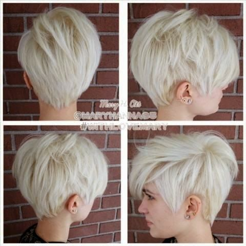 Platinum Short Haircuts!   The HairCut Web!