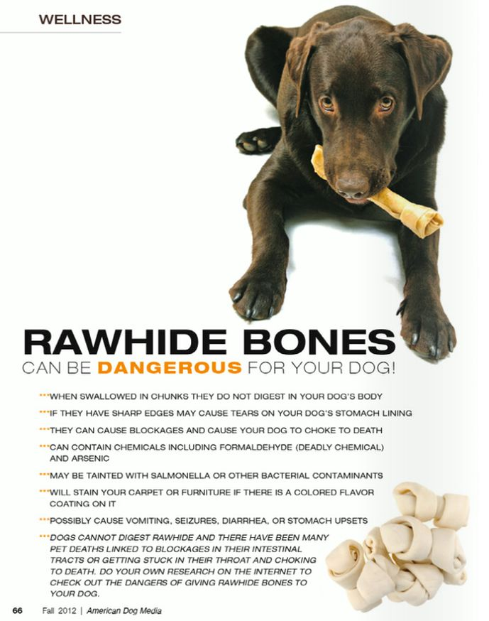 Rawhide bones can be DANGEROUS for dogs! PLEASE don't buy