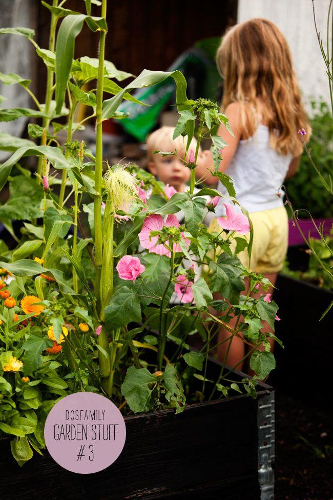 "Throwback Thursday- ""It´s My garden Baby!"" | Dos Family"