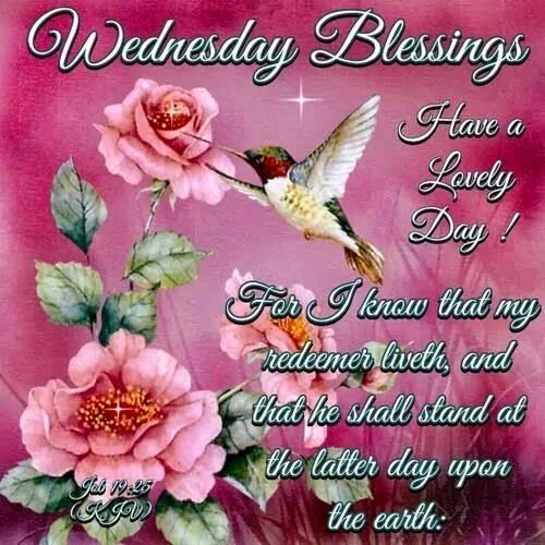 Cards Happy Day E Hump Wednesday