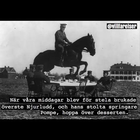 Göteborg OCH Arne Hägerfors tog över min kropp... #götlaborg #göteborg #överste #häst #militär #dessert #villfarelser #ironi #humor #text #foto #poesi