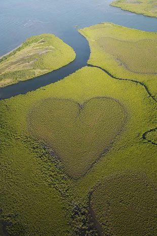 doğa bile aşk demiş sen ne diyon la