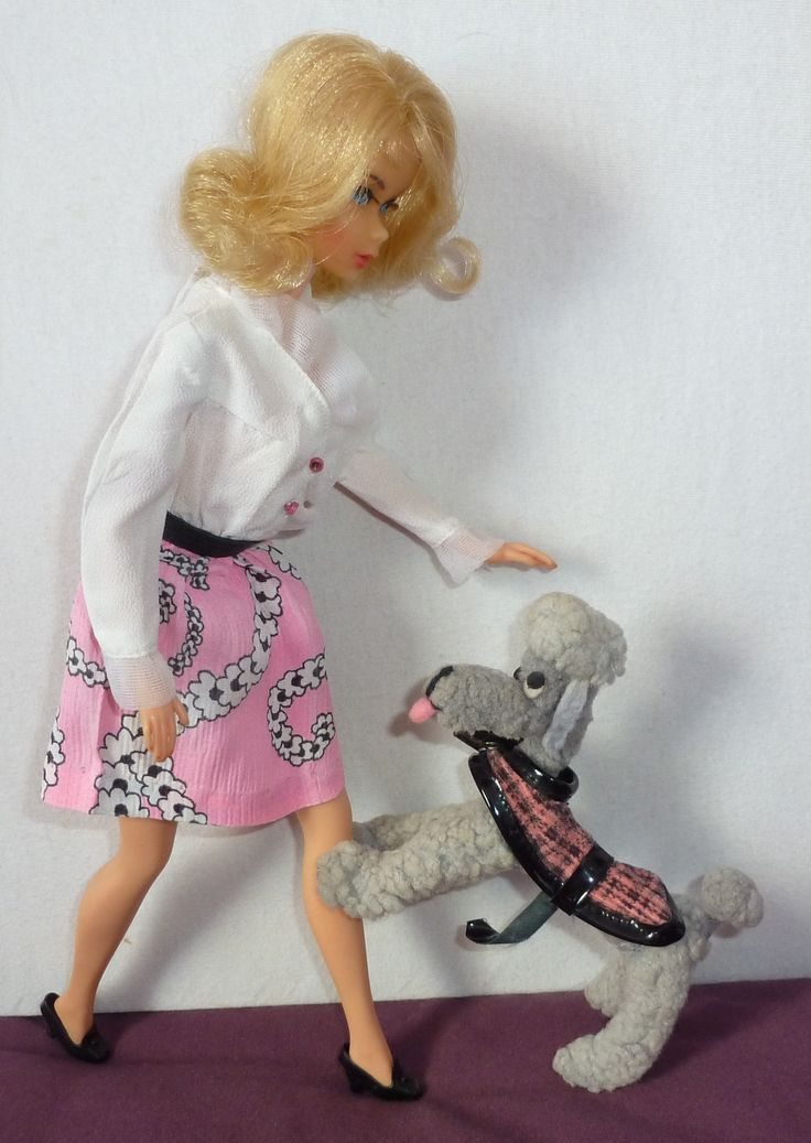 Mod Era Barbie With Dog N Duds Poodle So Cute In Matching Colors