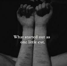 Image result for scars from cutting quotes