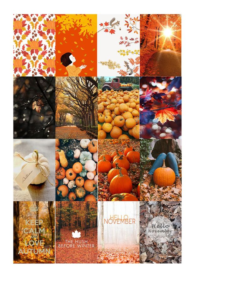 full fall box Free THP (the happy planner by MAMBI) sticker. Free printable…