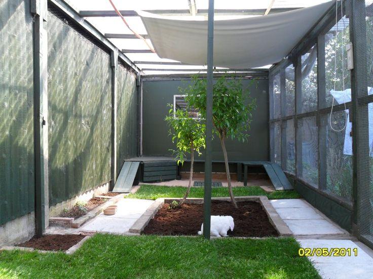 25 best rabbit run ideas on pinterest rabbit enclosure for Outdoor rabbit enclosure ideas