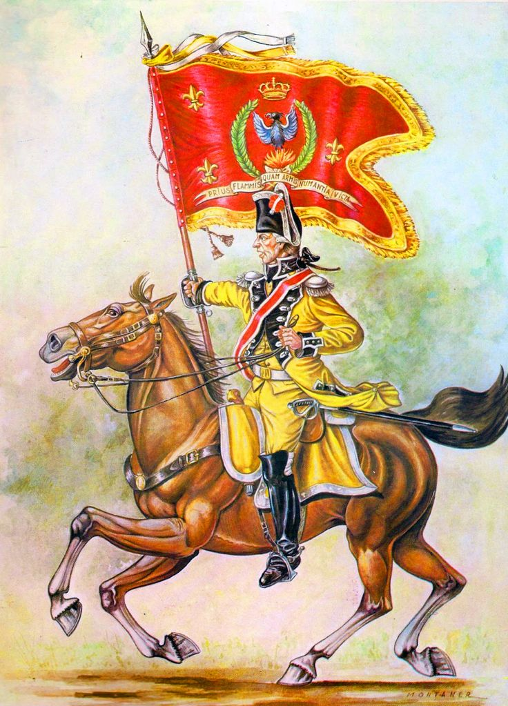 Spanish dragoon