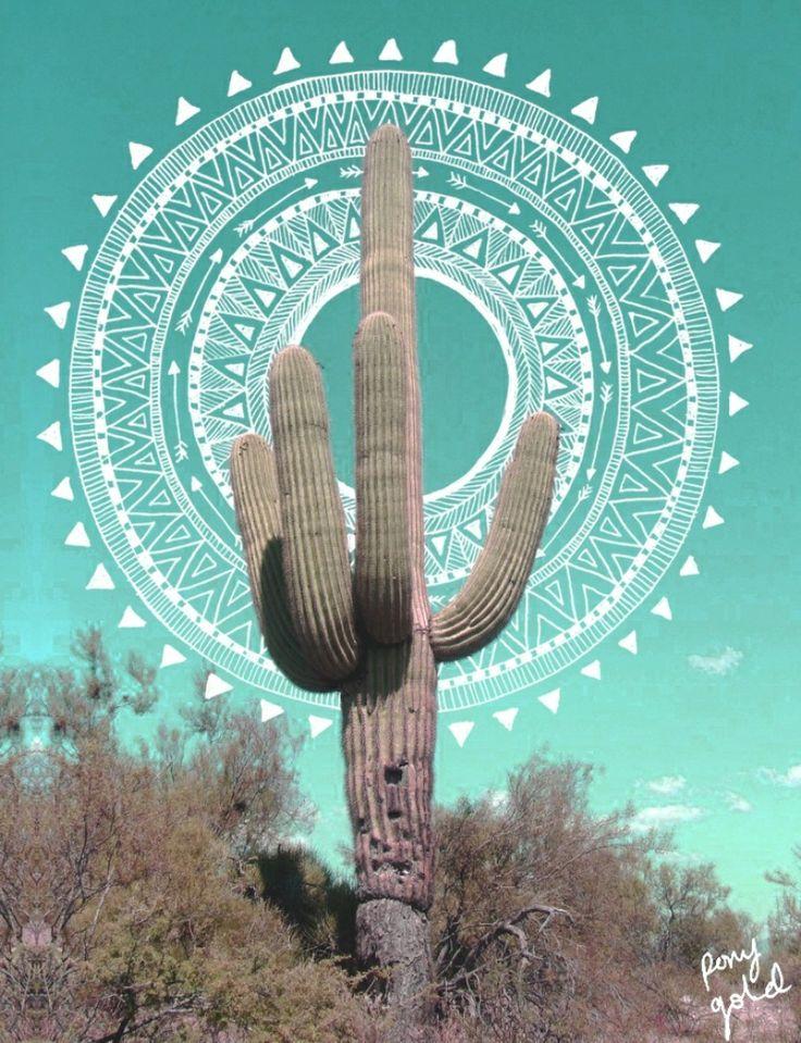 cactus & graphic