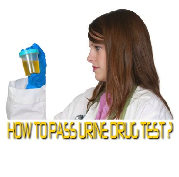 There are three popular approaches of how to pass the urine drug test: (1) cleaning your body through exercise and special diet, (2) detoxing your body with home remedies, and (3) using reliable detox products.