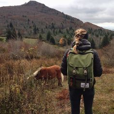 Our Travelers Pack exploring Grayson Highlands.