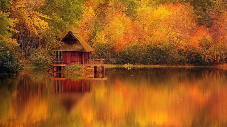 50 Best Images About Nature Wallpapers On Pinterest