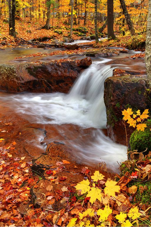 The Warmer Colors Of The Laurentians ~ Laurentian Mountains, Quebec City, Canada