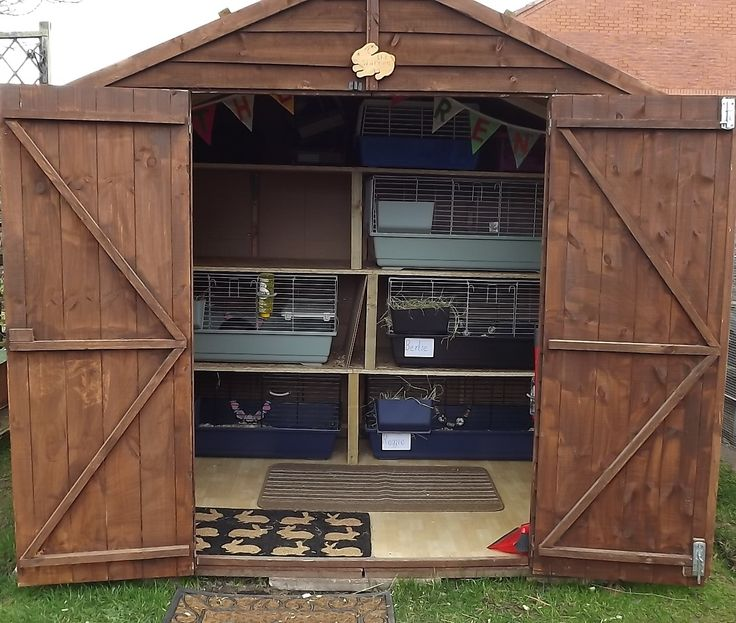Bunny shed x | Rabbit shed ideas | Pinterest | Sheds and ...