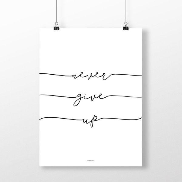 PLAKAT napisem: NEVER GIVE UP 2 - 40x50 cm - colormint - Plakaty typograficzne