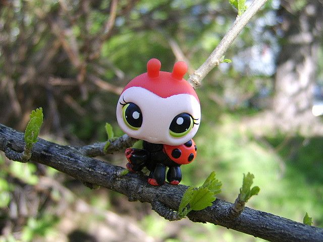 Littlest Pet Shop ladybug. So cute!