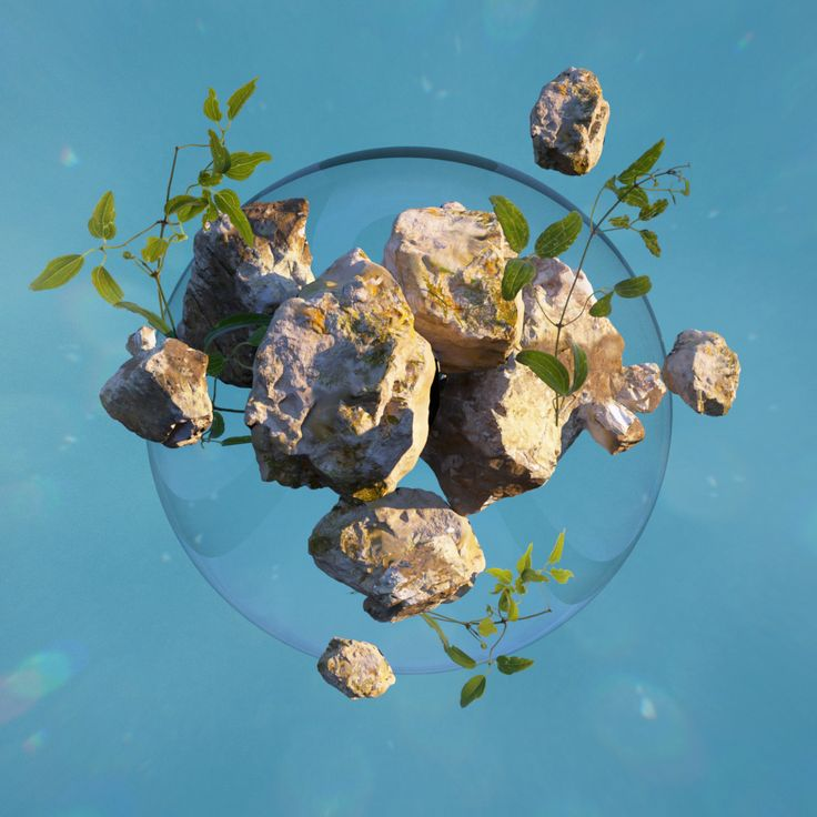 Geometry of Nature on Behance