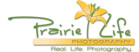 Prairie Life Photography - Real. Life. Photography.