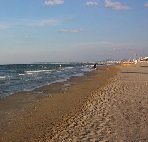 passeggiare sulla battigia a stroll on the seashore #battigia #seashore #camminare #stroll